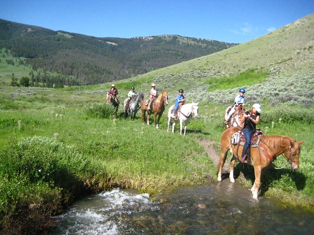 Lise Merrell crossing creek in Yellowstone National Park on horseback, one of the best things to do near Big Sky, Montana.