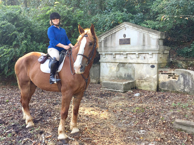 nancy d brown, horse, equestrian, hitchcock woods, aiken, south carolina, coker springs