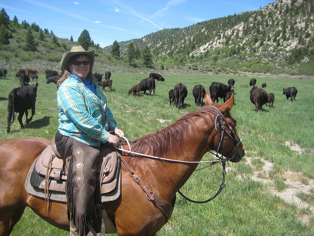 nancy d brown, cattle drive, high lonesome ranch, debeque, colorado, quarter horse, horseback ride