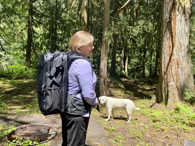 Tortuga Backpack the father's day gift guide