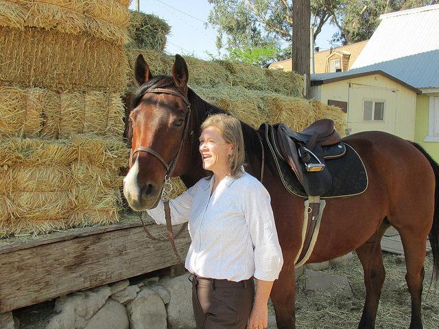 Nancy Brown, horses, Santa Clarita