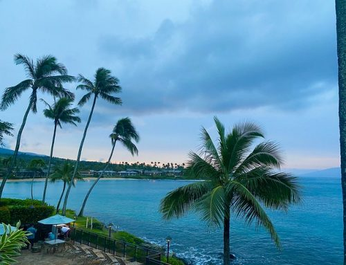 Napili Kai Beach Resort: Maui Family Vacation
