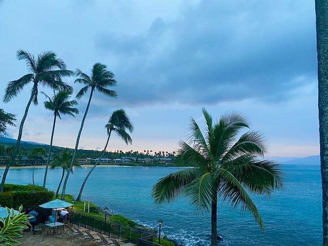 Palm trees and the Pacific Ocean view from our Napili Kai Beach Resort Oceanview suite in Maui, Hawaii.