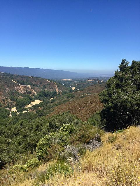 foothills park, palo alto, california, san mateo road trip, san mateo day trip