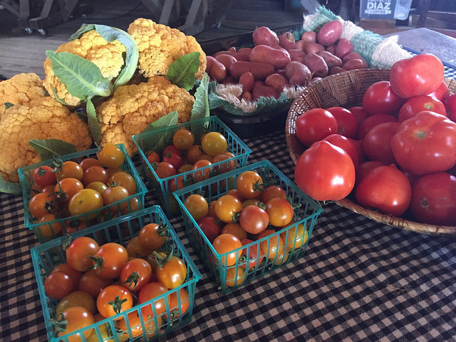 tomatoes, produce, pie ranch, pescadero, sustainable farming, working farm in california