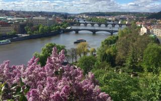 prague, vltava river, bridges, river, czech republic, river view, praha