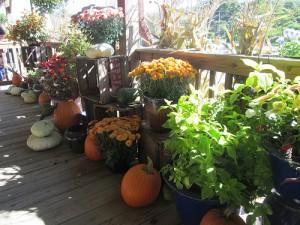 Fall in Botetourt County, Virginia