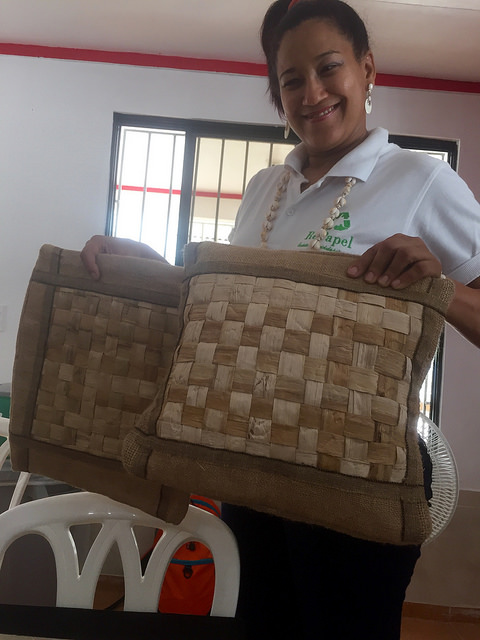 repapel, el javillar, dominican republic, pillow, craft cooperative