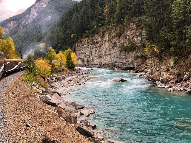 Rocky Mountaineer train glides by Kicking Horse River in Canada with glacial river water and fall colors on trees.