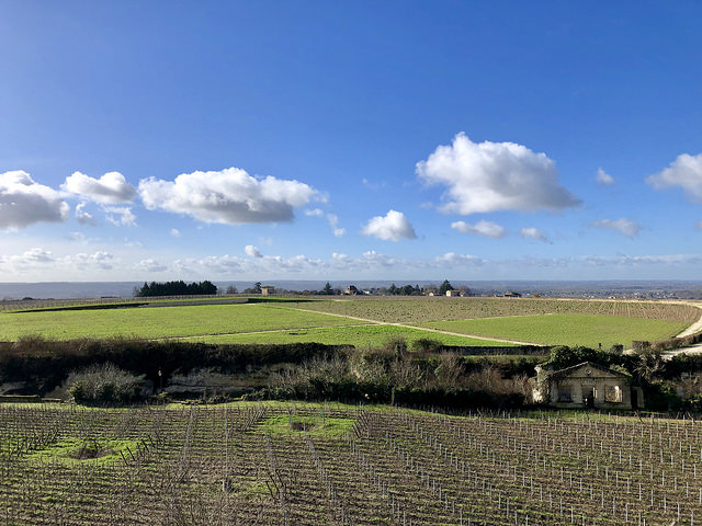 saint emilion, vineyards, french wine region, dordogne valley, france