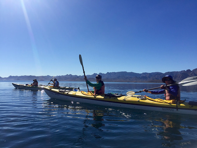 kayak, row sea kayak adventures, sea of cortez