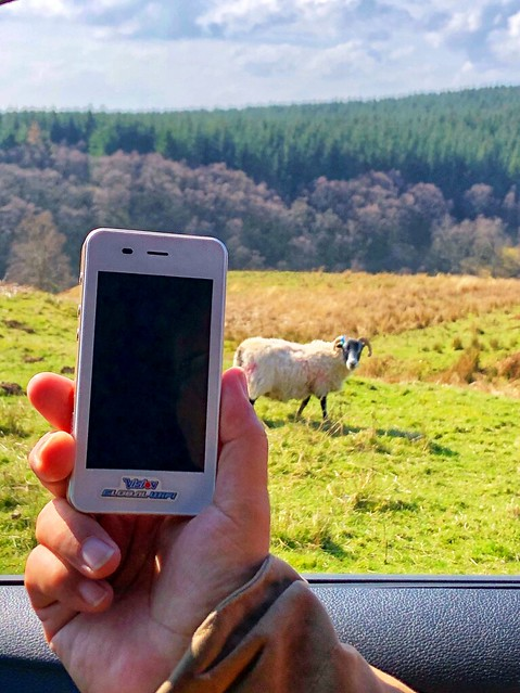 vision global wifi hotspot, portable wifi, lamb, driving in scotland