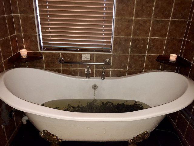 organic seaweed, voya seaweed baths, seaweed treatment, strandhill spa, county sligo, ireland