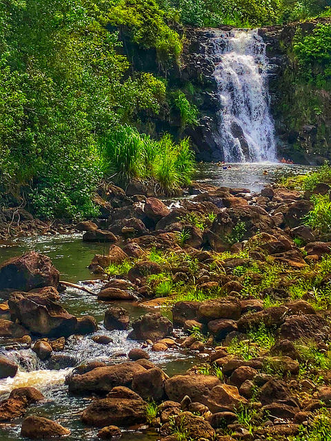 7 things to do on oahu hawaii besides surfing, waimea valley waterfall, waimea valley botanical garden, oahu, northshore hawaii