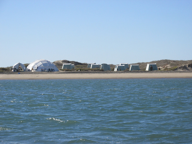 whale camp, magdalena bay, lopez mateos, mexico