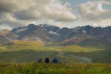 Alaska, Wildlike, movie