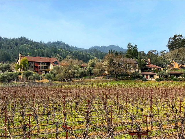 Review Wine Country Inn Unique Napa Valley Hotel Best