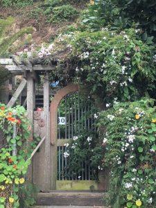 Bolinas, CA, hidden doorway
