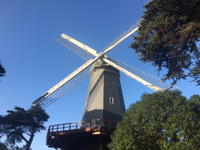 Murphy's Windmill, Golden Gate Park